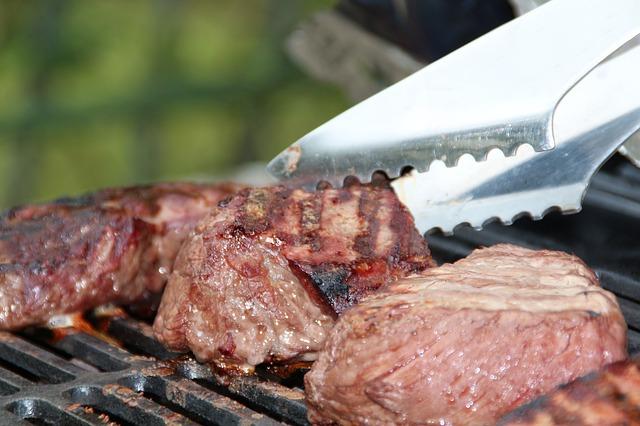 Les critères de sélection du Barbecue à Gaz